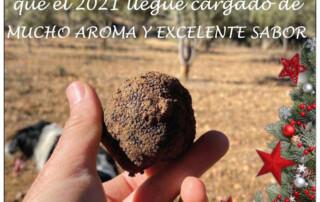 Saborea Salvacañete - Trufa - Navidad 2020